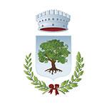 Comune di Castelnuovo di Val di Cecina